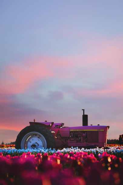 photo of ride on tractor during sunset
